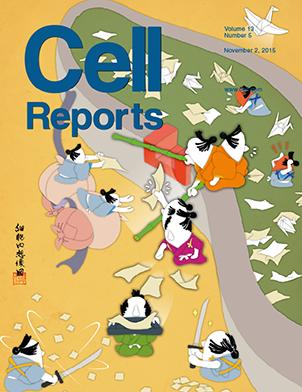 CellRep表紙