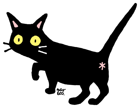 黒猫.png