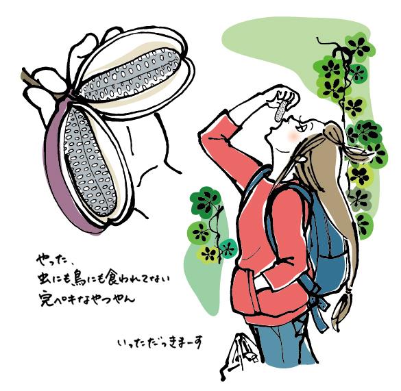 autumn_02.jpg