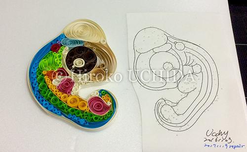 embryo2.png