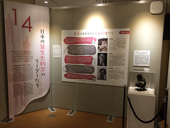 exhibition17.jpg